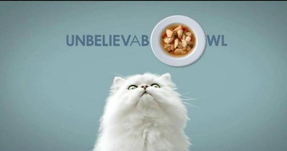 Free Sample Of Fancy Feast Broths