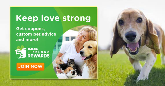 Join Iams For Exclusive Offers