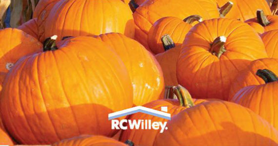 Free Pumpkin From RC Willey